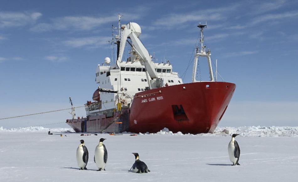 Kaiserpinguine auf dem Meereis vor dem Eisbrecher RRS James Clark Ross. Dickes Meereis macht das Vorankommen unmöglich. (Bild: BAS)