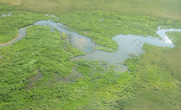 Die flachen Tundragebiete im Beringmeer sind im Sommer von Flüssen und kleinen Seen durchzogen,