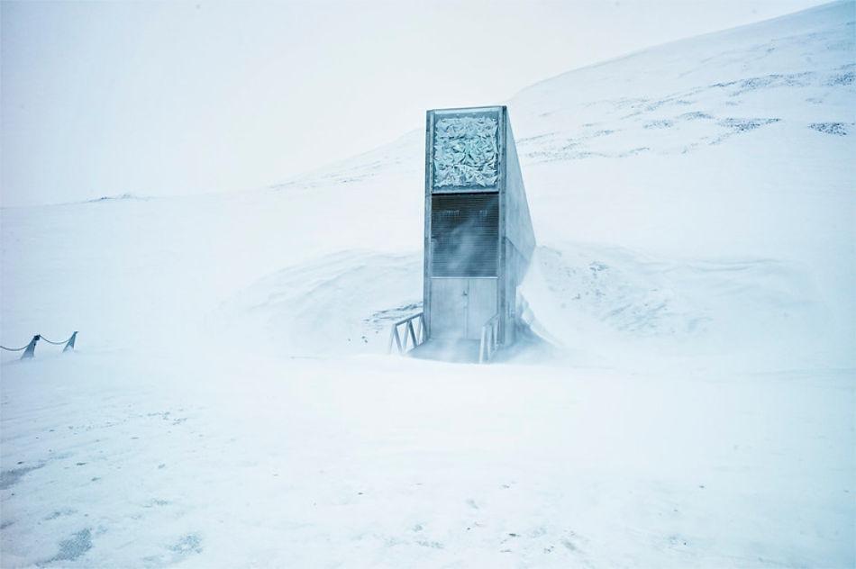 """Wildblumen von Prinz Charles Anwesen und heiliger Mais der Cherokee lagert neu in diesem sog. """"Doomsday Vault"""" unter der Erde Svalbards. (Foto: Svalbard Global Seed Vault/Matthias Heyde)"""